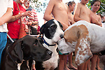 Crowd and dogs at presentations. Christmas Eve dog races from Scotland Island to Church Point, Sydney, New South Wales