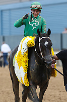 HOT SPRINGS, AR - April 14: Jockey Luis Contreras and  Ever So Clever #12 after winning the Fantasy Stakes at Oaklawn Park on April 14, 2017 in Hot Springs, AR. (Photo by Ciara Bowen/Eclipse Sportswire/Getty Images)