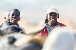 Younf Mozambican cattle herders with their cattle, Limpopo floodplain, Maputo Province, Mozambique