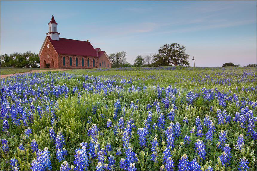From Art, Texas, just outside of Mason in the Texas HIll Country, I was photographing bluebonnets along Art Hedwig Road. My attention was captured by this pastoral scene, however, and I had to stop and take some pictures of our favorite Texas Wildflower. I've met a few folks who attend church here, and I must admit God certainly graced the front of the sanctuary this early April morning.
