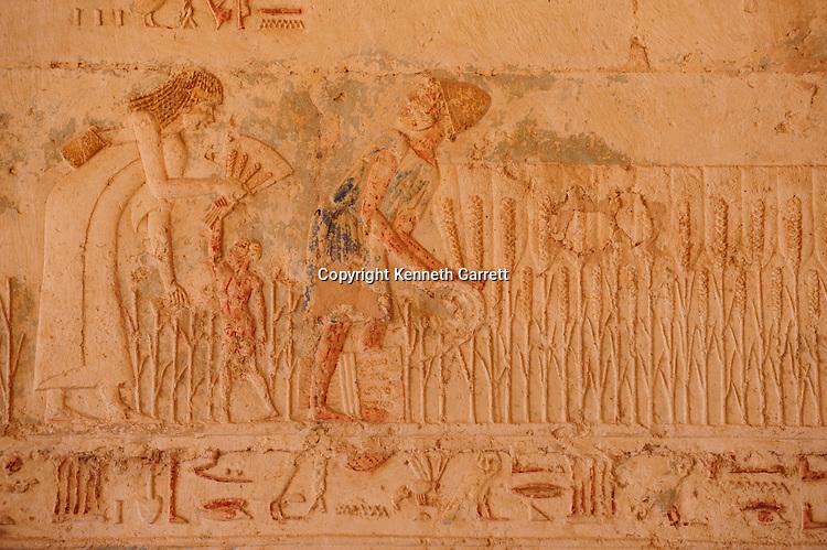 Zahi Hawass Secret Egypt Travel Guide; Egypt; archaeology; El Minya; Tuna el Gebel; Tomb of Petosiris; Late Period; harvesting grain, Greek style