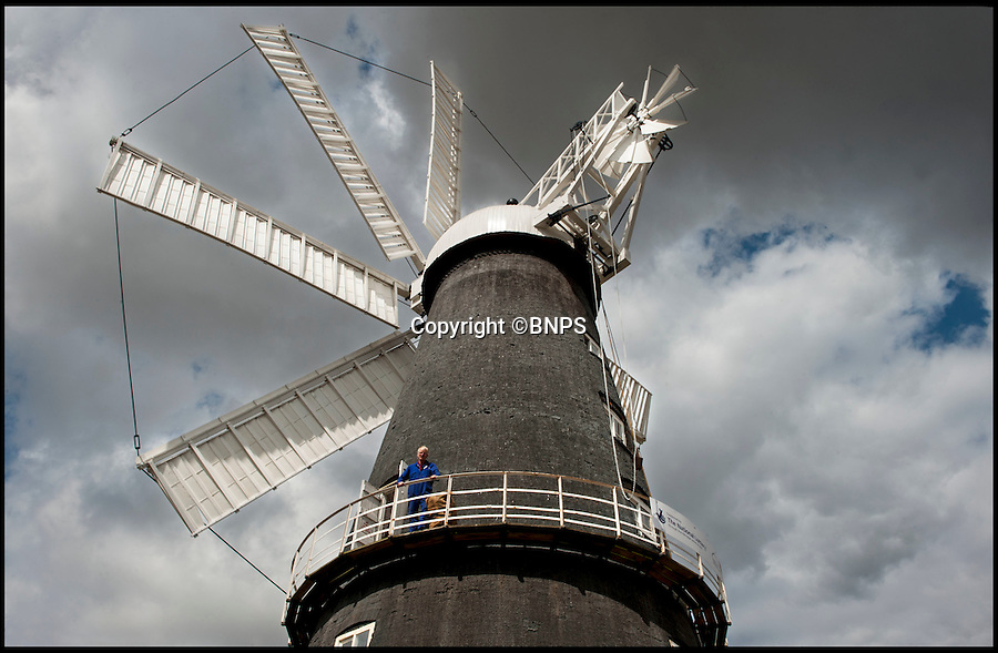 BNPS.co.uk (01202 558833)<br /> Pic: PhilYeomans/BNPS<br /> <br /> Flour power - Miller Jim Bailey on the restored Mill.<br /> <br /> Octo-mill turns again...'Ferrari of windmills' is restored.<br /> <br /> Britains only eight sailed windmill is working once again after a &pound;150,000 restoration to repair its unique sails.<br /> <br /> Heckington Mill has ground wheat to make flour since 1830 but it was closed down when two of its enormous wooden sails were found to have rotted. <br /> <br /> Four years and more than 100,000 pounds were spent crafting the one-tonne, 34ft sails from the trunks of Siberian larch trees so that the historic mill near Boston, Lincs, could continue to operate.<br /> <br /> And after a nail-biting operation to crane the old sails off and replace them with the new ones, the Grade I-listed building has been brought back to life.<br /> <br /> Eight-sailed mills were at the forefront of milling technology and experts have described Heckington Mill as &quot;the Ferrari of windmills&quot;.<br /> <br /> Miller Jim Bailey, 62, hopes that with the help of the mill's new sails he can increase output to five tonnes of flour a year within the next three years.