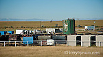 oil drilling and storage facilites and tanks cutbank montana