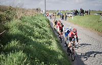 Jelle Wallays (BEL/Lotto-Soudal) ahead of the peloton on the cobbles of the Holleweg<br /> <br /> 72nd Dwars Door Vlaanderen (1.UWT)<br /> 1day race: Roeselare &rsaquo; Waregem BEL (203.4km)