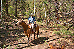 USA, Utah, horseback ride in Escalante with wranglers Jamie Barnson and Cash Barnson through ponderosa pine forest up steep trail to Aquarius Plateau. Model Released MR. Travel Journalist Lee Foster.