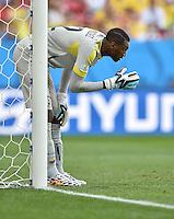 FUSSBALL WM 2014  VORRUNDE    Gruppe D     Schweiz - Ecuador                      15.06.2014 Torwart Alexander Dominguez (Ecuador)