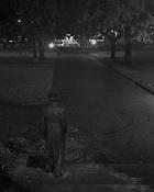 Princes Park -Steps &amp; Statue<br /> Launceston<br /> 2009
