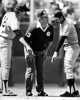 Yankee's Roy Smalley and manager Billy Martin argue with umpire Durwood Merrill . 1988 photo by Ron Riesterer.