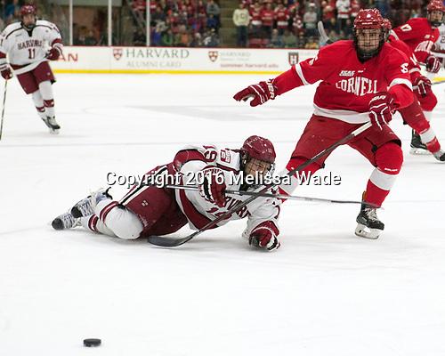 Jake Horton (Harvard - 19), Matt Nuttle (Cornell - 5) - The Harvard University Crimson defeated the visiting Cornell University Big Red on Saturday, November 5, 2016, at the Bright-Landry Hockey Center in Boston, Massachusetts.