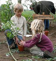 Schulgarten, Anlage eines Schmetterlingsgarten, Garten der Grundschule Nusse wird als Projektarbeit von einer 1. Klasse gestaltet, Kinder legen Raupengarten an, Himbeer als wichtige Raupenpflanze wird in Topf gesetzt, Gartenarbeit
