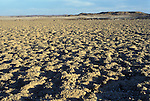 The Namib Naukluft rocky desert. Owned by  the Diamond  company  De Beers the  area has restricted access.  Skeleton Coast, Namibia. in a region where there is little to no rainfall.