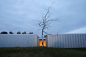 """Askew"" by Roxy Paine"