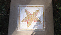 Starfish custom mosaic accent for the Public Library Newport Beach, CA