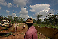 Rancher watches cattle unload as they move livestock to higher ground a rains are expected to flood fields on the cattle ranch.