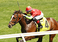 LEXINGTON, KY - April 09, 2017, #4 Yoshida (JPN) and Jose Ortiz win the 4th race, Maiden $70,000 for 3 year olds at Keeneland Race Course.  Lexington, Kentucky. (Photo by Candice Chavez/Eclipse Sportswire/Getty Images)