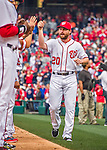 7 April 2016: Washington Nationals infielder Daniel Murphy greets teammates as he is introduced on the field prior to the Nationals' Home Opening Game against the Miami Marlins at Nationals Park in Washington, DC. The Marlins defeated the Nationals 6-4 in their first meeting of the 2016 MLB season. Mandatory Credit: Ed Wolfstein Photo *** RAW (NEF) Image File Available ***
