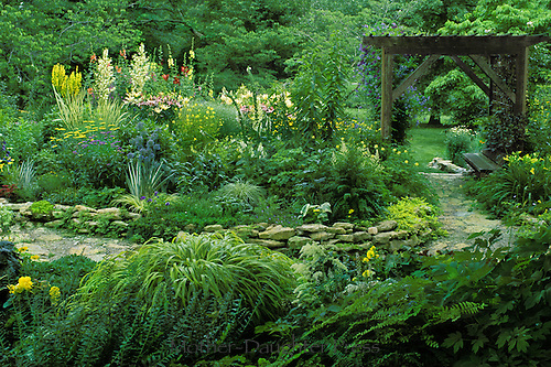 English garden path through backyard of private home, Midwest USA