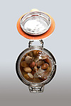 River Rocks in Glass Enclosure with Splash