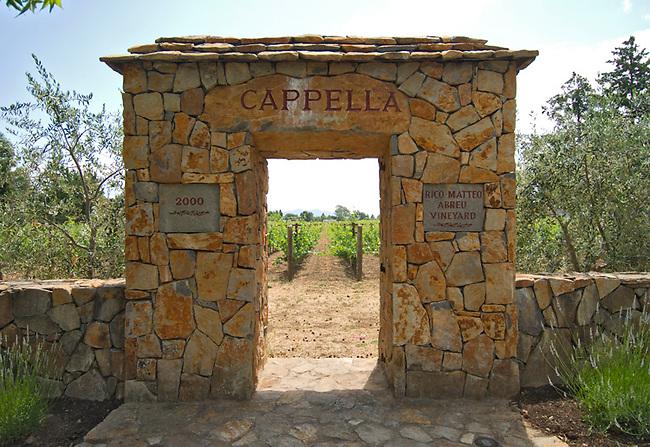 Door marks opening to vineyard in Napa Valley