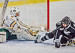1 February 2015: University of Vermont Catamount Goaltender Madison Litchfield, a Sophomore from Williston, VT, makes a third period save against the visiting Providence College Friars at Gutterson Fieldhouse in Burlington, Vermont. The Lady Cats defeated the Friars 7-3 in Hockey East play. Mandatory Credit: Ed Wolfstein Photo *** RAW (NEF) Image File Available ***