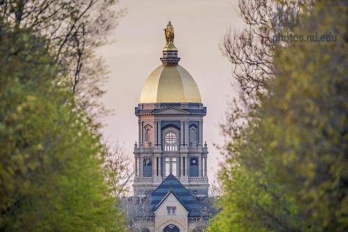 Apr. 28, 2015; Golden Dome viewed down Notre Dame Avenue. (Photo by Matt Cashore/University of Notre Dame)