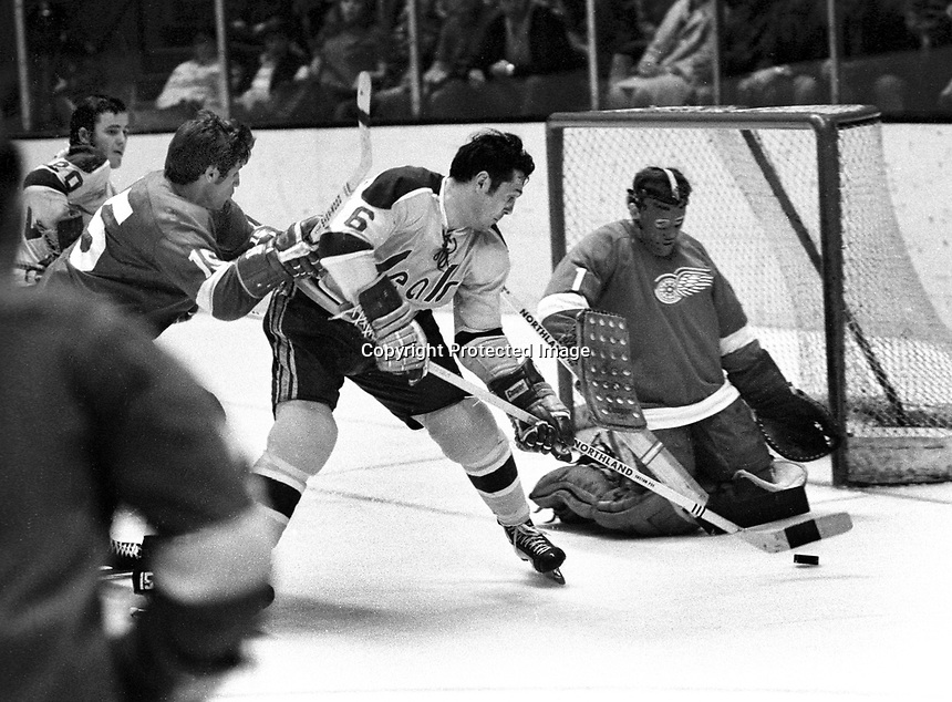 Seals vs Red Wings, #6 Dick Mattiusssi tries to ram puck past goalie Rene LeClerc, Roy Edwards and Ernie Hicke.  (1971 photo/Ron Riesterer)