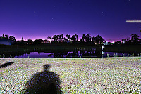 Human shadows on a grassy lawn under a purple sky at night.