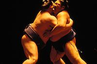 Two sumo wrestlers wrestling in Hawaii