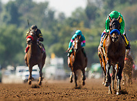 ARCADIA, CA - MARCH 11: Mastery #4, ridden by Mike Smith wins the San Felipe Stakes at Santa Anita Park before being vanned off with an injury, on March 11, 2017 in Arcadia, California. (Photo by Alex Evers/Eclipse Sportswire/Getty Images)