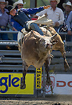 John Jacobs, from Timber Lake, S.D. tries to hang onto Cowboy Caviar during the Xtreme Bull Riding Competition at the Kitsap County Fair and Stampede  held Aug. 26 to Aug. 30, 2009 in Silverdale, WA. Jim Bryant Photo. All Right Reserved. © 2009