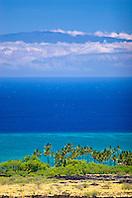 palm tree groves, Kiholo Bay, Haleakala volcanic mountain (10,023 ft) of Maui and Pacific Ocean in backgound, scenic view from Kohala Coast, Big Island, Hawaii, USA