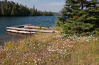 Remnants of an old fishing camp at Isle Royale National Park.