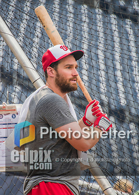 23 July 2016: Washington Nationals infielder Daniel Murphy awaits his turn in the batting cage prior to a game against the San Diego Padres at Nationals Park in Washington, DC. The Nationals defeated the Padres 3-2 on a Stephen Drew pinch-hit, walk-off triple in the bottom of the 9th inning to tie their series at one game apiece. Mandatory Credit: Ed Wolfstein Photo *** RAW (NEF) Image File Available ***