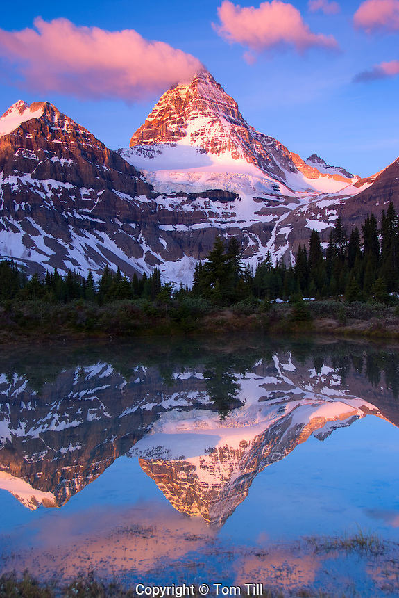 Mt. Assinibone at sunset, Matterhorn of the Rockies, Mt. Assiniboine Provincial Park, Canadian Rockies    British Columbia, Canada