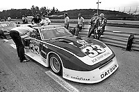 Sam Posey speaks with co-driver Paul Newman about the Datsun 280ZX Turbo before practice for the Camel GT IMSA race at Road America near Elkhart Lake, Wisconsin, on August 31, 1980. (Photo by Bob Harmeyer)