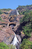 Dudhsagar waterfall in jungle forest in India (GOA, Karnataka)