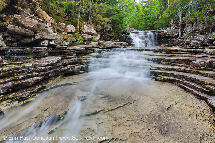 Coliseum Falls along Bemis Brook in Harts Location, New Hampshire USA during the spring months. This area is part of Crawford Notch State Park.