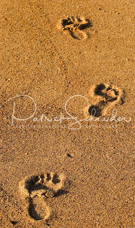 Barefoot impressions along the beach in Amelia Island, FL