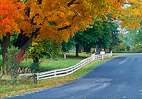 Old Chatham, New York, Hudson River Valley, Road Fall, white fence