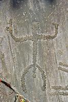 Petroglyph, rock carving, of a human figure. Carved by the ancient Camunni people in the copper age between 3200-2200 BC. Rock no 29, Foppi di Nadro, Riserva Naturale Incisioni Rupestri di Ceto, Cimbergo e Paspardo, Capo di Ponti, Valcamonica (Val Camonica), Lombardy plain, Italy