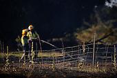 AI120502 Tarras-Fire, Tarras Rural Fire 3 January 2015