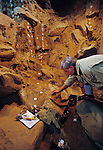 Peopling the Americas, tools, Meadowcroft Rockshelter, Pennsylvania, James Adovasio.
