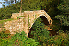 The narrow Beggars bridge (1620) built by Alderman Thomas Ferris as a memorial to his wife Agnes .  North Yorks National Park, North Yorkshire, England