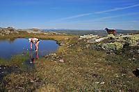 På toppen av Rødhåmmåren ved Schulzhytta. Bak ser en innover mot Sverige. Skarvene og Roltdal nasjonalpark, Selbu. Utsikt fra fjellet Rødhammeren/Sprauten øst for Schulzhytta, i retning nordøst mot Meråker og Sverige.