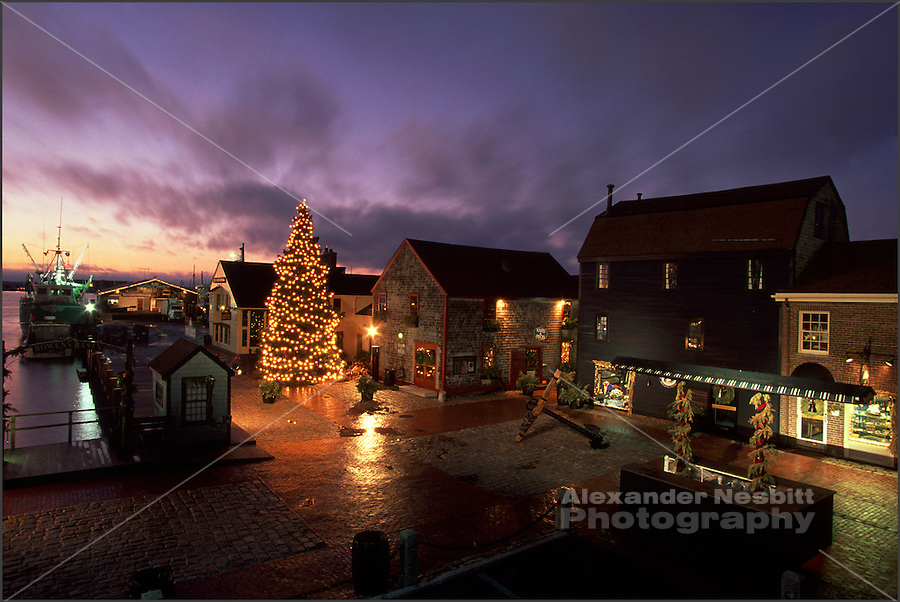 USA, Newport, RI - Christmass tree on Bowen's wharf with wet pavement reflections.