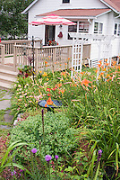 Backyard deck and house, with old-fashioned and heirloom flowering plants: perennial garden, daylilies Hemerocallis, Liatris, Sedum, container plants, trellis, umbrella