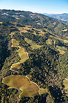 Aerial view of Napa vineyards, California