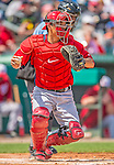 2 March 2013: Washington Nationals catcher Kurt Suzuki in action during a Spring Training game against the St. Louis Cardinals at Roger Dean Stadium in Jupiter, Florida. The Nationals defeated the Cardinals 6-2 in their first meeting since the NLDS series in October of 2012. Mandatory Credit: Ed Wolfstein Photo *** RAW (NEF) Image File Available ***