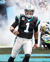 NFL Carolina Panthers vs. New Orleans Saints, December 22, 2013