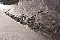 Watt am Flusslauf der Elbe: EUROPA, DEUTSCHLAND, SCHLESWIG- HOLSTEIN, NIEDERSACHSEN(GERMANY), 05.03.2011: Watt am Flusslauf der Elbe